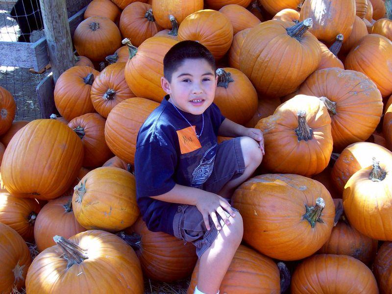 Pumpkinmax
