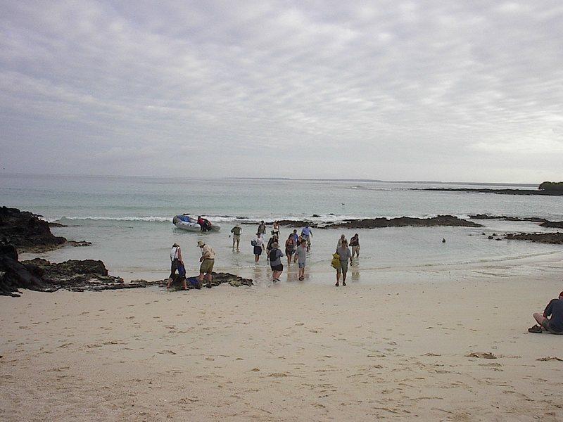 Las_bachas_ashore